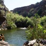 Yehudiya Pool