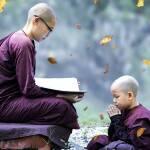 theravada-buddhism-4749025_1920